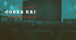 Cobra Kai: Dann kommt Staffel 4 auf Netflix, weitere Seasons in Planung