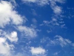 Cloud- und IoT-Sicherheit: Lösungen und Herausforderungen
